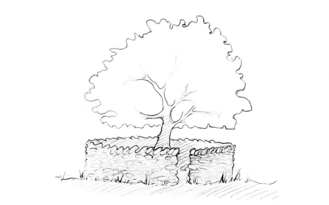 Treefold (somewhere-nowhere)
