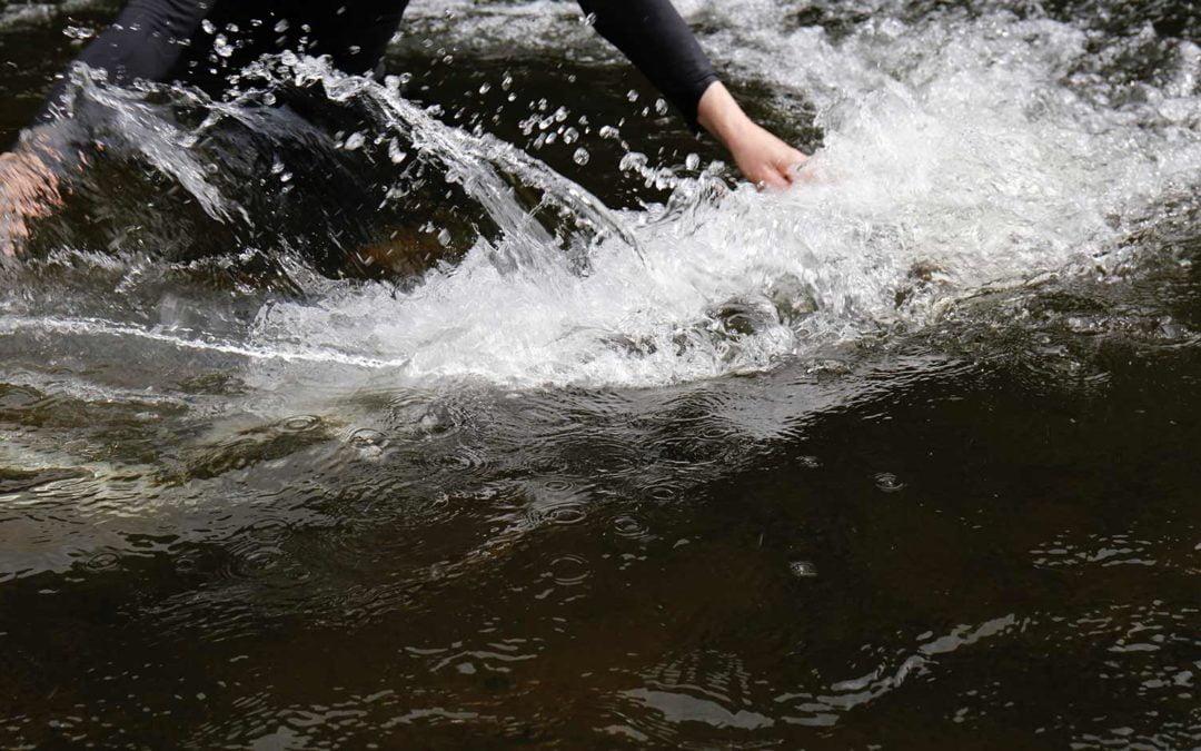 Publication: The Ephemeral River